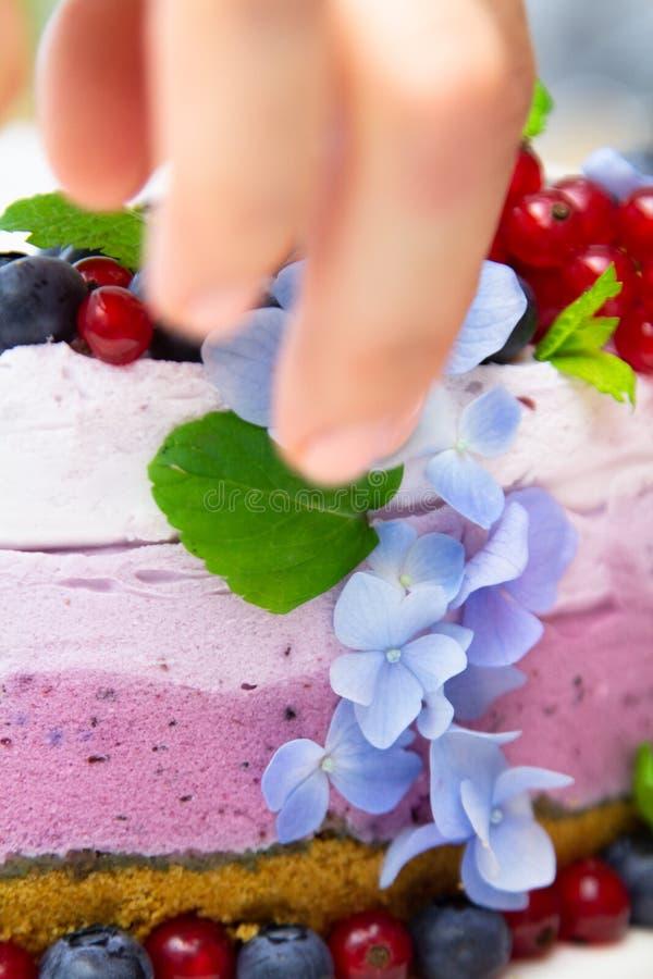 Ορίζοντας και μαγειρεύοντας τυριών κρέμας κέικ τροφίμων με τα βακκίνια στοκ εικόνες