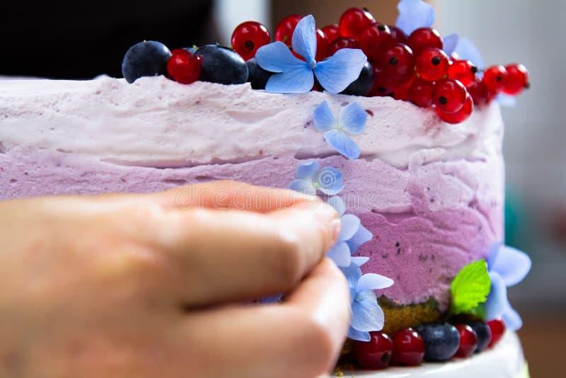 Ορίζοντας και μαγειρεύοντας τυριών κρέμας κέικ τροφίμων με τα βακκίνια στοκ φωτογραφία με δικαίωμα ελεύθερης χρήσης