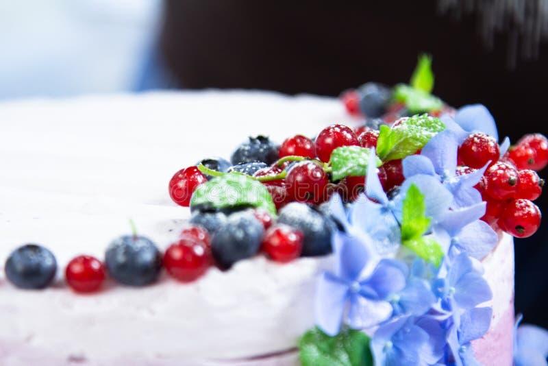 Ορίζοντας και μαγειρεύοντας τυριών κρέμας κέικ τροφίμων με τα βακκίνια στοκ εικόνα με δικαίωμα ελεύθερης χρήσης
