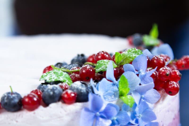 Ορίζοντας και μαγειρεύοντας τυριών κρέμας κέικ τροφίμων με τα βακκίνια στοκ φωτογραφίες με δικαίωμα ελεύθερης χρήσης