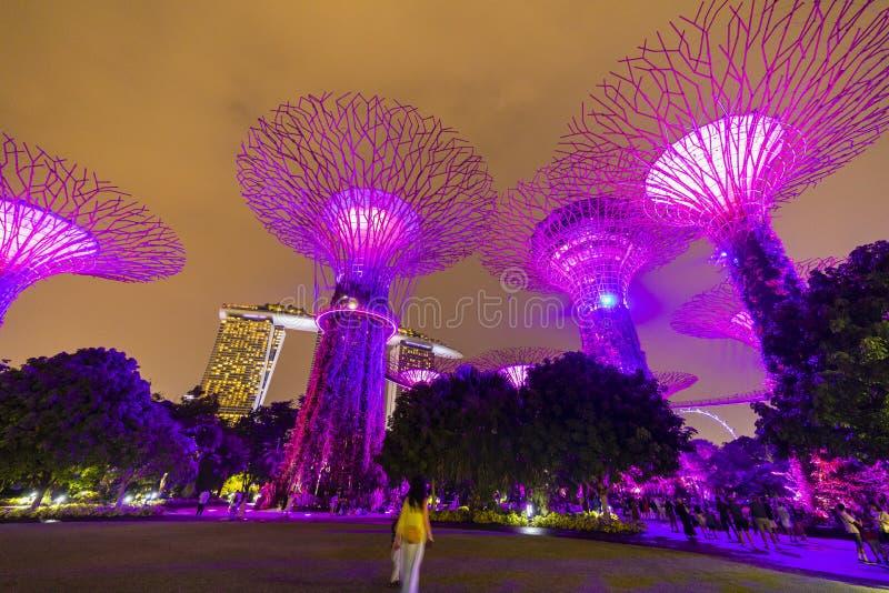 Ορίζοντας νύχτας της Σιγκαπούρης στους κήπους από τον κόλπο Άλσος SuperTree κάτω από τον μπλε νυχτερινό ουρανό στη Σιγκαπούρη στοκ φωτογραφίες