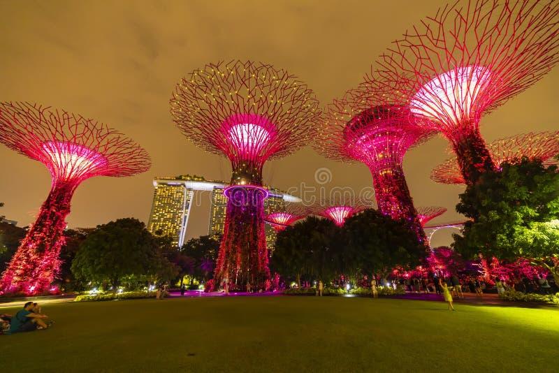 Ορίζοντας νύχτας της Σιγκαπούρης στους κήπους από τον κόλπο Άλσος SuperTree κάτω από τον μπλε νυχτερινό ουρανό στη Σιγκαπούρη στοκ φωτογραφία