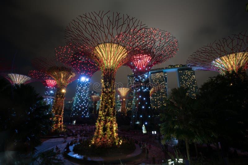 Ορίζοντας νύχτας της Σιγκαπούρης στους κήπους από τον κόλπο στοκ εικόνα με δικαίωμα ελεύθερης χρήσης