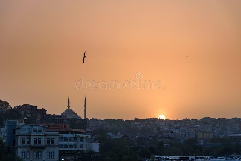 Ορίζοντας της Ιστανμπούλ στο ηλιοβασίλεμα στοκ φωτογραφία