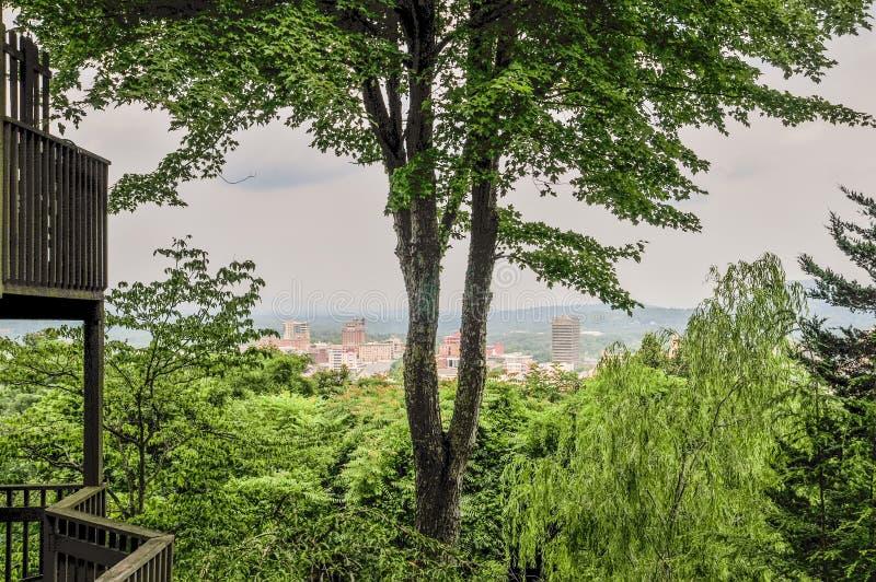 Ορίζοντας του Άσβιλλ nc μέσω των δέντρων στοκ φωτογραφία με δικαίωμα ελεύθερης χρήσης