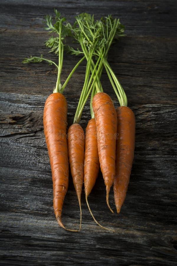 Οργανικά ακατέργαστα καρότα με τα πράσινα στοκ εικόνες με δικαίωμα ελεύθερης χρήσης