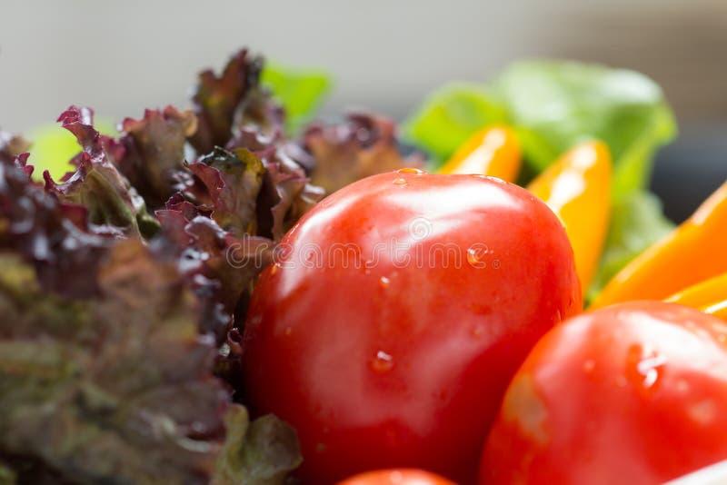 Οργανικά λαχανικά. στοκ φωτογραφία