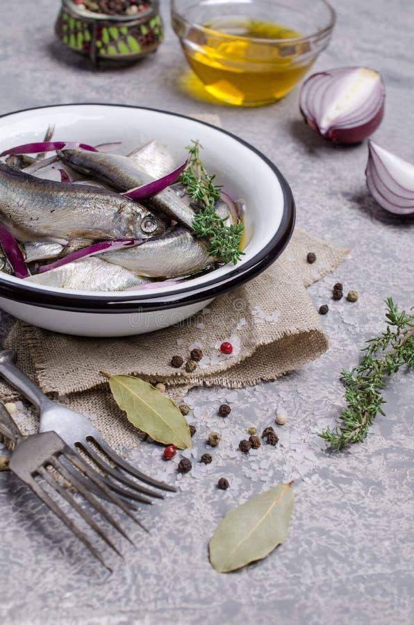 Οργανικά ζυμωνομμένα μικρά ψάρια στοκ φωτογραφίες