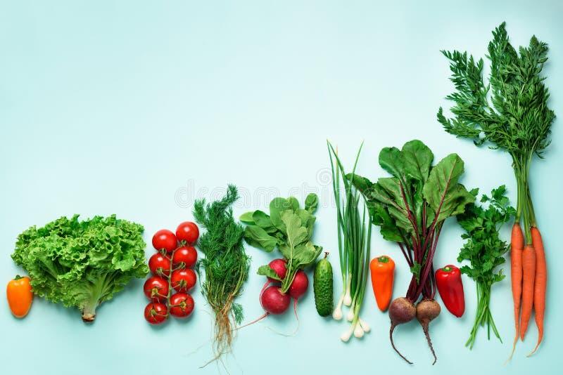 Οργανικά λαχανικά και εργαλεία κήπων στο μπλε υπόβαθρο με το διάστημα αντιγράφων Τοπ άποψη του καρότου, τεύτλο, πιπέρι, ραδίκι, ά στοκ εικόνες