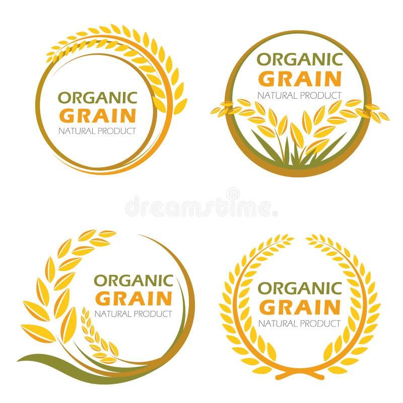 Οργανικά προϊόντα σιταριού ρυζιού ορυζώνα κύκλων και υγιές διανυσματικό σχέδιο τροφίμων ελεύθερη απεικόνιση δικαιώματος