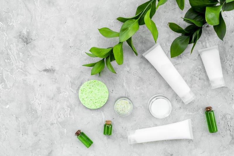 Οργανικά προϊόντα φροντίδας δέρματος Κρέμα, λοσιόν, τονωτικό πετρέλαιο κοντά στα πράσινα φύλλα στο γκρίζο διάστημα αντιγράφων άπο στοκ φωτογραφίες με δικαίωμα ελεύθερης χρήσης