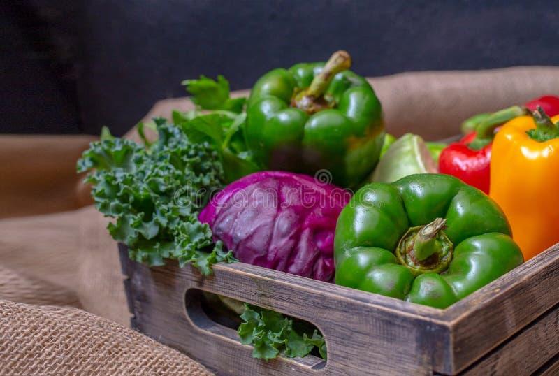 Οργανικά τρόφιμα φυσικών προϊόντων και φρέσκα λαχανικά, πράσινο πιπέρι, κόκκινο πιπέρι, κίτρινα τσίλι, πορφυρό κουνουπίδι, πράσιν στοκ εικόνα
