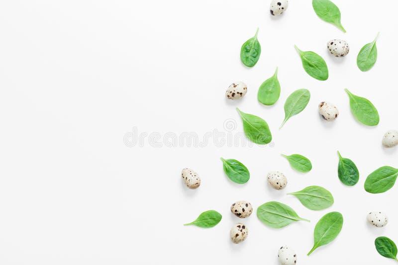 Οργανικά φύλλα σπανακιού και αυγά ορτυκιών για ένα υγιές πρόγευμα στην άσπρη τοπ άποψη υποβάθρου Επίπεδος βάλτε στοκ εικόνα
