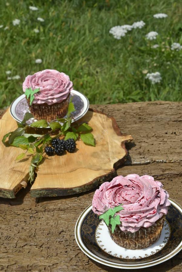 Οργανικά muffins φρούτων βατόμουρων στοκ φωτογραφίες με δικαίωμα ελεύθερης χρήσης