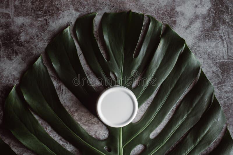 Οργανική καλλυντική κρέμα σε ένα πράσινο φύλλο Φυσικά προϊόντα ομορφιάς για τη φροντίδα δέρματος στοκ φωτογραφία με δικαίωμα ελεύθερης χρήσης