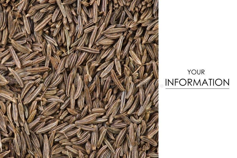 Οργανική μακροεντολή εγκαταστάσεων τροφίμων κύμινου στοκ εικόνα