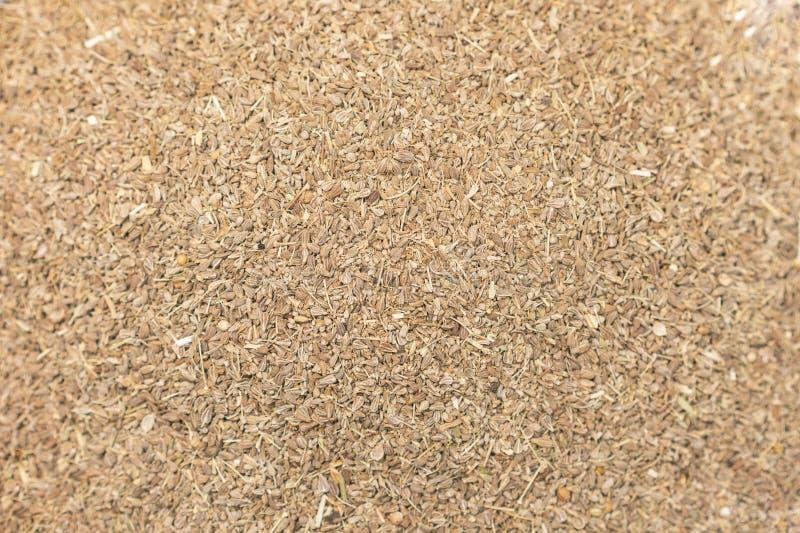 Οργανική ξηρά σύσταση υποβάθρου κινηματογραφήσεων σε πρώτο πλάνο σπόρων κορίανδρου (Coriandrum sativum) στοκ εικόνες με δικαίωμα ελεύθερης χρήσης