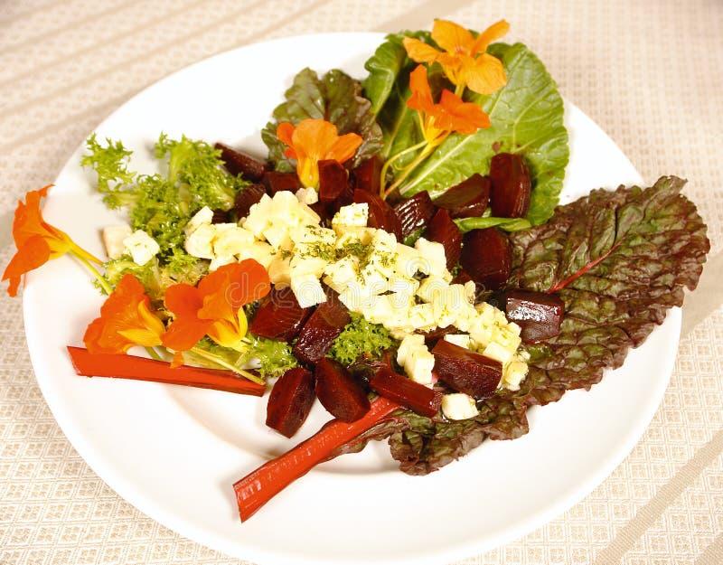 οργανική σαλάτα στοκ εικόνα