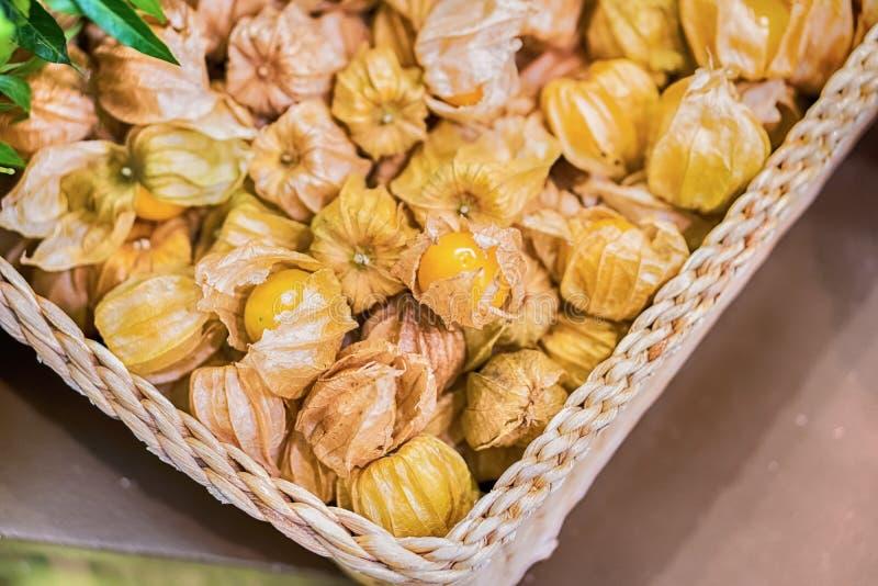 Οργανική τροφή επίγειων κερασιών φρούτων physalis ριβησίων ακρωτηρίων στοκ φωτογραφίες