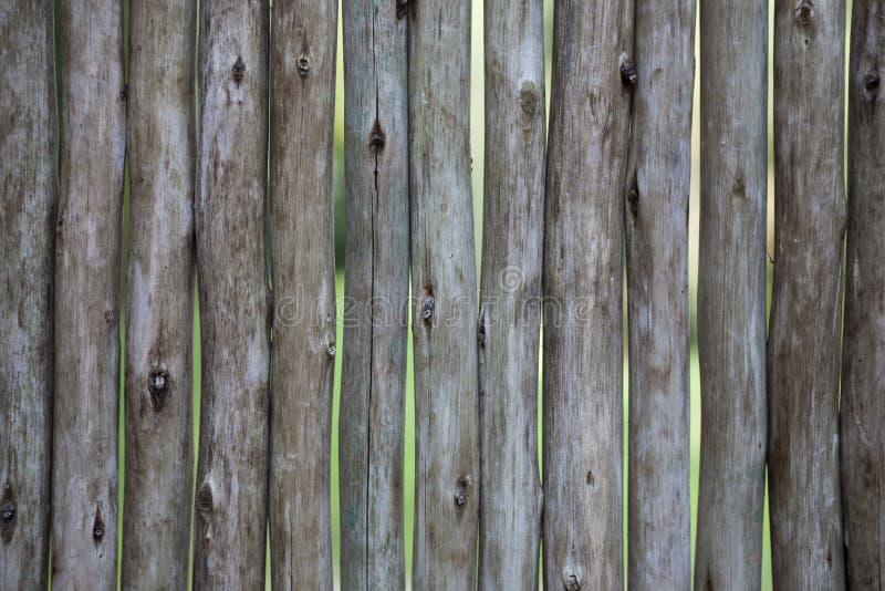 Οργανική τροφή Μεγάλες, σκοτεινές, παλαιές ξύλινες σανίδες με την πράσινη χλόη Επιλογές για το οργανικό εστιατόριο Υπόβαθρο για τ στοκ φωτογραφία με δικαίωμα ελεύθερης χρήσης