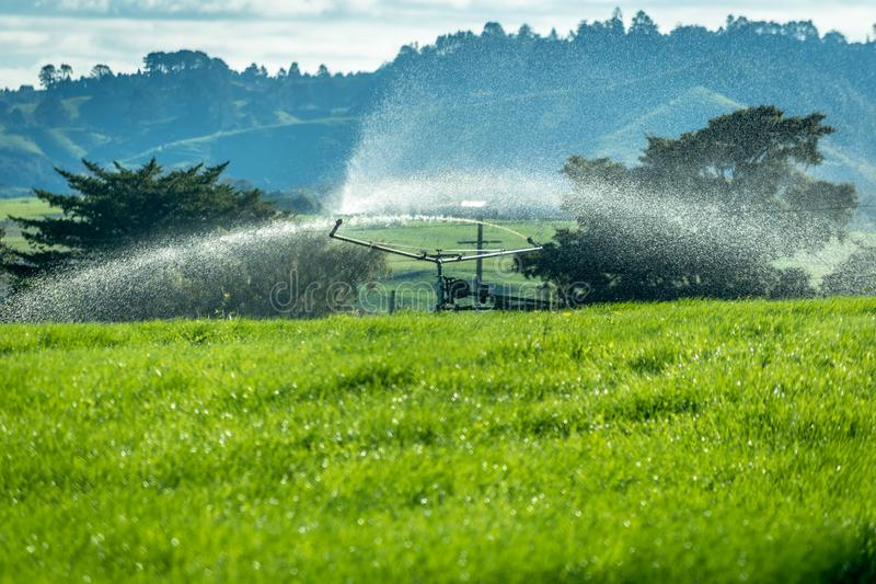 Οργανικό λίπασμα που ψεκάζεται σε ένα αγρόκτημα στοκ εικόνες με δικαίωμα ελεύθερης χρήσης