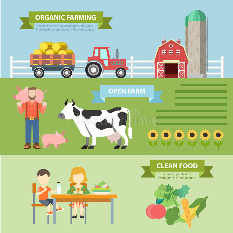 Οργανικό φυσικό αγροτικό επίπεδο infographics: καλλιεργώντας τρόφιμα eco διανυσματική απεικόνιση