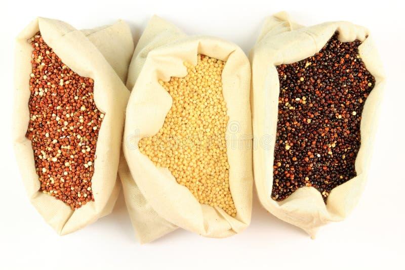 οργανικό quinoa στοκ εικόνες