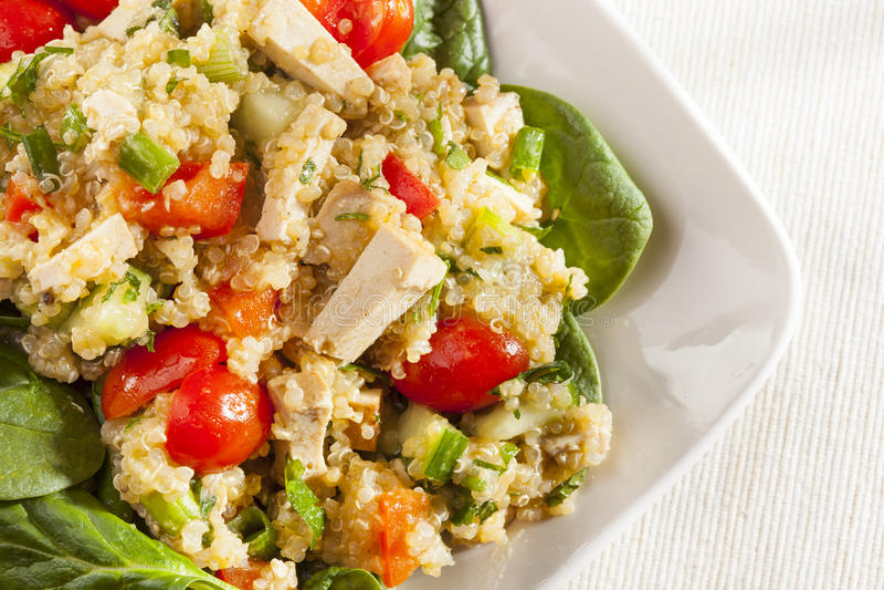 Οργανικό Quinoa Vegan με τα λαχανικά στοκ εικόνες