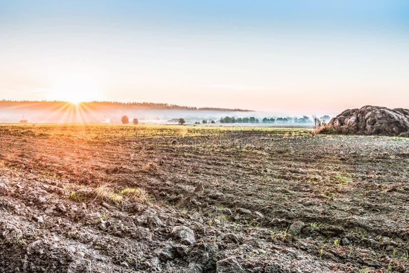 Οργωμένος μετά από να συγκομίσει έναν τομέα κοντά στο Κίεβο, Ουκρανία Ομίχλη πέρα από τον τομέα νωρίς το πρωί Ένα αγροτικό τοπίο  στοκ εικόνες με δικαίωμα ελεύθερης χρήσης