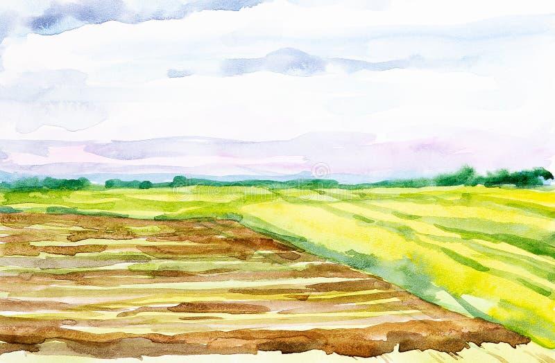 Οργωμένος ρωσικός τομέας με το δάσος στο υπόβαθρο και τη χλόη στο πρώτο πλάνο Απεικόνιση Watercolor μιας αγροτικής θέσης διανυσματική απεικόνιση