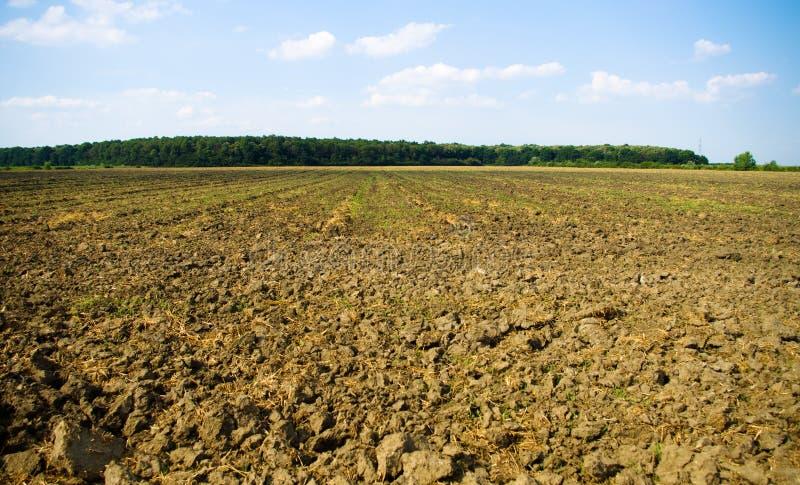 Οργωμένο έδαφος από το δάσος στοκ φωτογραφία με δικαίωμα ελεύθερης χρήσης