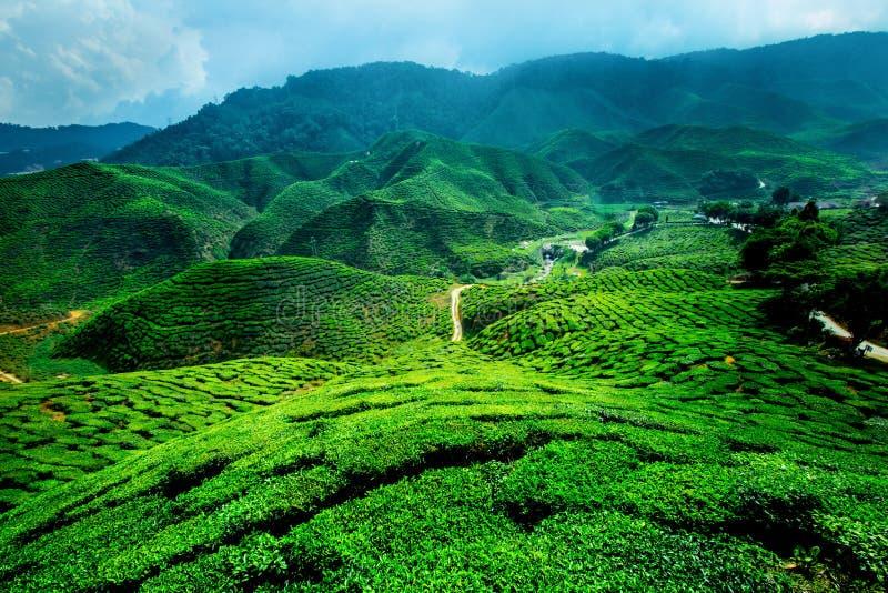 ορεινές περιοχές Μαλαισ στοκ εικόνες με δικαίωμα ελεύθερης χρήσης