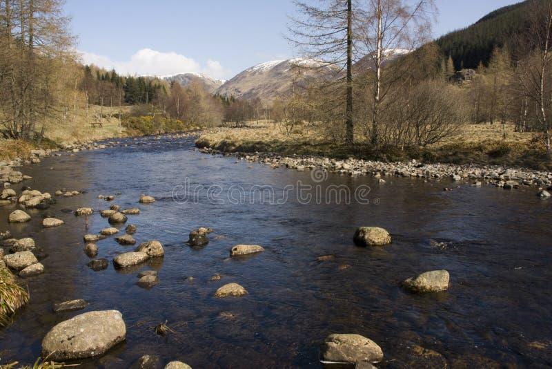 ορεινές περιοχές σκωτσέζικα στοκ φωτογραφία με δικαίωμα ελεύθερης χρήσης