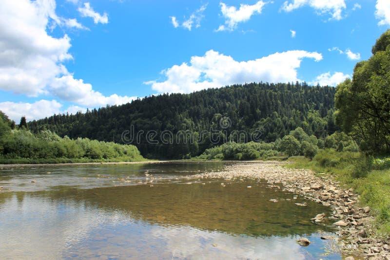 Ορεινός ποταμός ταχύτητας στα Καρπάθια βουνά στοκ εικόνα με δικαίωμα ελεύθερης χρήσης