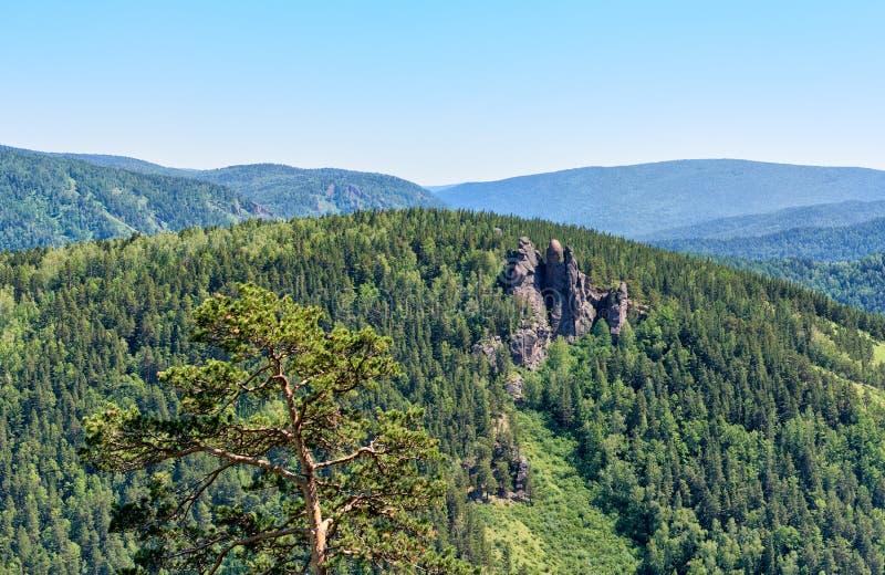 Ορεινός όγκος Ermak βράχου Στυλοβάτες αδύτων φύσης Stolby στοκ φωτογραφίες