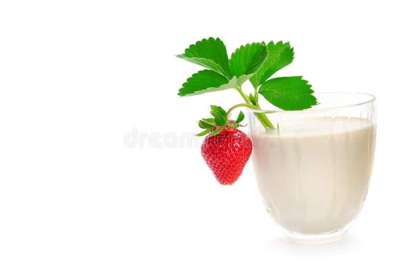 Ορεκτικοί καταφερτζήδες strawberrie και γάλακτος που απομονώνονται στο λευκό Fre στοκ φωτογραφίες με δικαίωμα ελεύθερης χρήσης