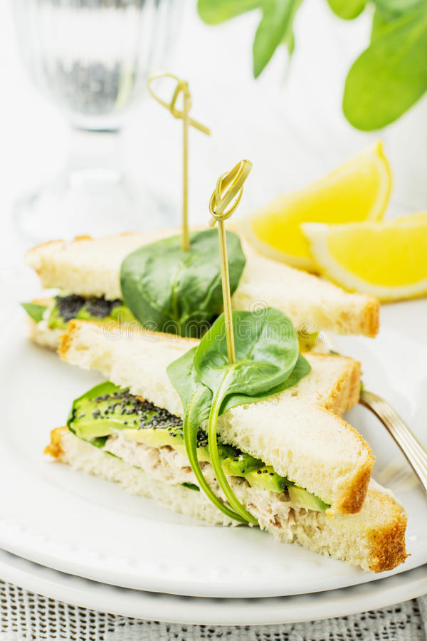 Ορεκτικό σάντουιτς με το κοτόπουλο, σπανάκι, αβοκάντο στοκ εικόνα με δικαίωμα ελεύθερης χρήσης