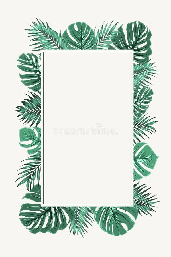 Ορθογώνια πράσινα τροπικά φύλλα πλαισίων συνόρων ελεύθερη απεικόνιση δικαιώματος