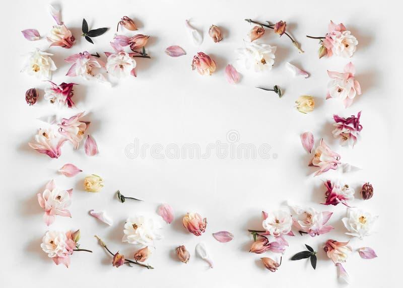 Ορθογώνιο πλαίσιο φιαγμένο από ρόδινο και μπεζ λουλούδι κουδουνιών στοκ φωτογραφίες
