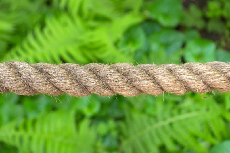 Οριζόντια τεντωμένο παχύ σχοινί που γίνεται από τη φυσική ίνα στοκ φωτογραφία με δικαίωμα ελεύθερης χρήσης