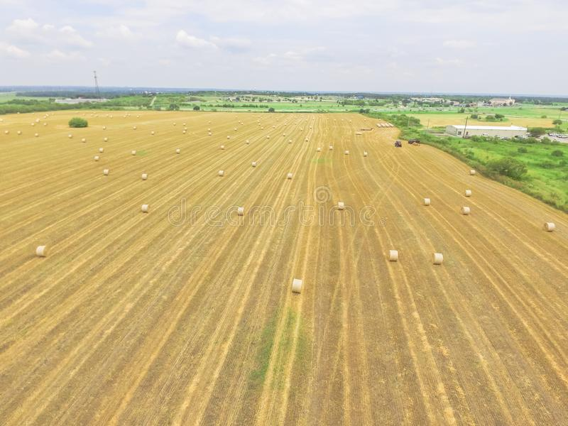 Οριζόντιοι σανοί δεμάτων στο αγρόκτημα καλαμποκιού μετά από τη συγκομιδή στη χώρα Hill, στοκ εικόνα με δικαίωμα ελεύθερης χρήσης