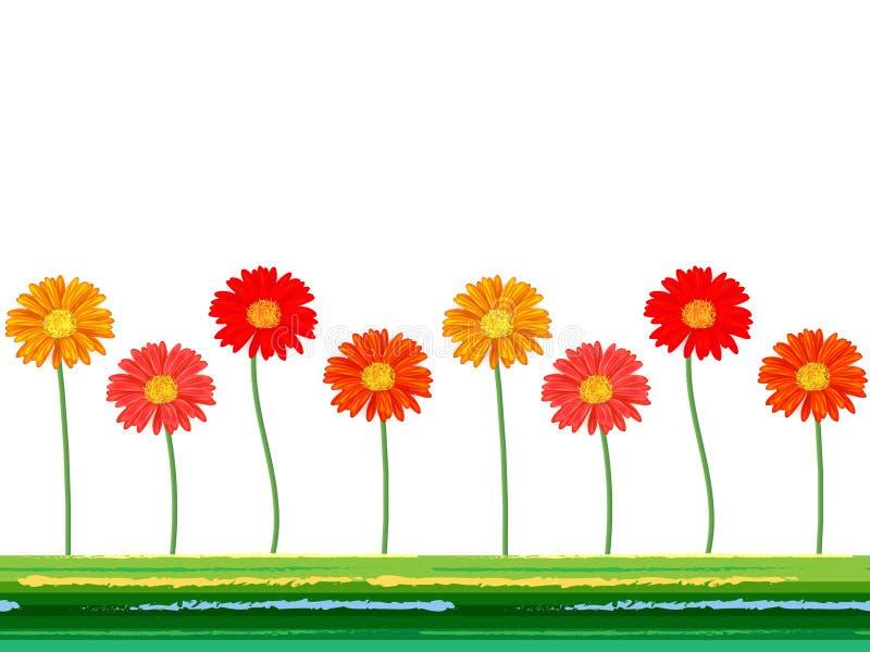 Οριζόντιο άνευ ραφής υπόβαθρο με τα ζωηρόχρωμα λουλούδια gerbera επίσης corel σύρετε το διάνυσμα απεικόνισης διανυσματική απεικόνιση