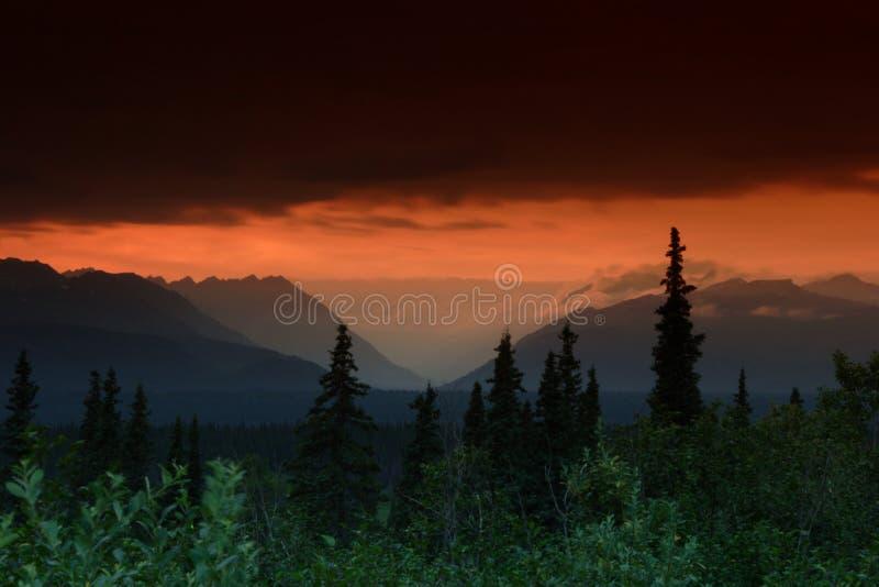 Download οριζόντιο ηλιοβασίλεμα στοκ εικόνες. εικόνα από δέντρο - 398464