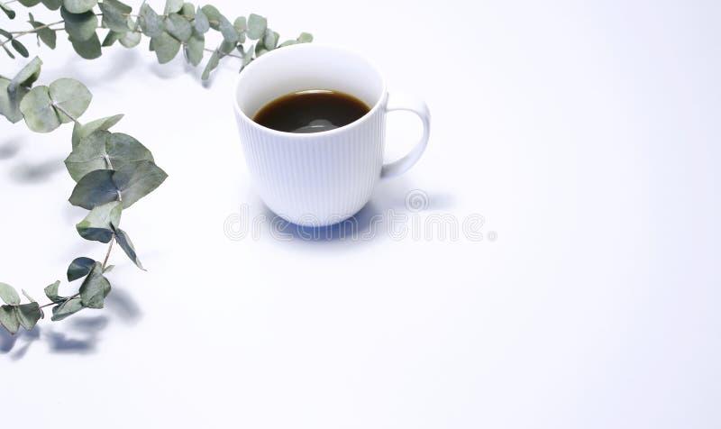 Ορισμένη φωτογραφία αποθεμάτων Η θηλυκή ακόμα σύνθεση ζωής με το φλιτζάνι του καφέ, και η ανθοδέσμη του ευκαλύπτου διακλαδίζονται στοκ φωτογραφία με δικαίωμα ελεύθερης χρήσης