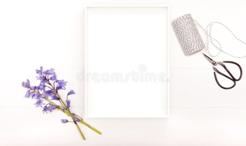 Ορισμένη φωτογραφία αποθεμάτων με το άσπρο πλαίσιο εικόνων στοκ εικόνα
