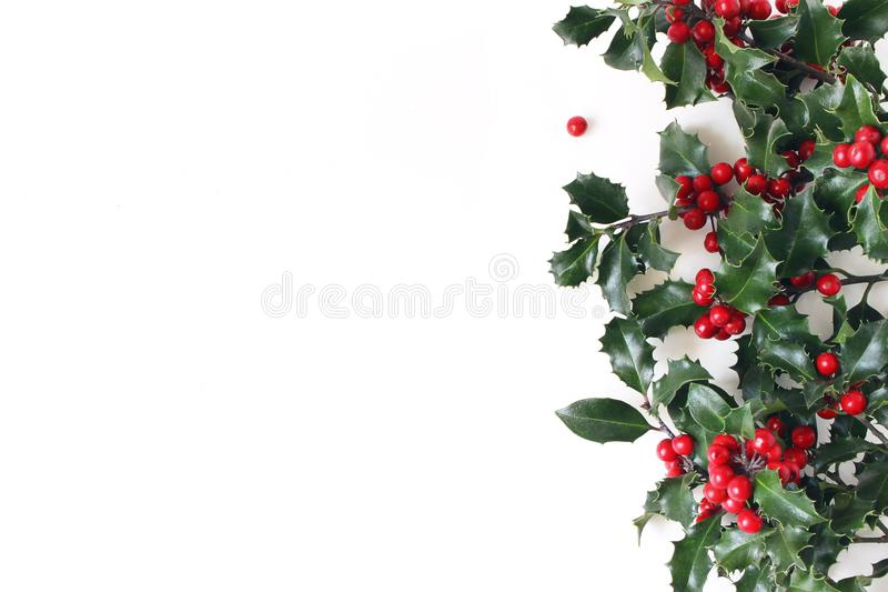 Ορισμένη Χριστούγεννα σύνθεση, διακοσμητικό πλαίσιο, έμβλημα Πράσινα φύλλα δέντρων της Holly, κόκκινοι μούρα και κλάδοι που απομο στοκ φωτογραφίες