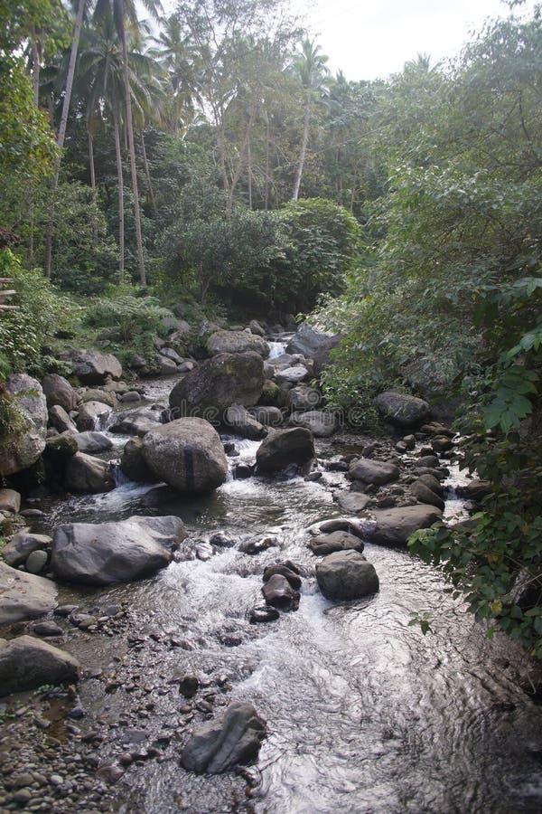 Ορμητικά σημεία ποταμού Βαλένθια, Negros, Φιλιππίνες ποταμών Casaroro στοκ εικόνες