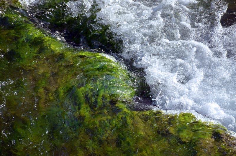 Ορμητικά σημεία ποταμού ποταμών Niagara στοκ φωτογραφίες
