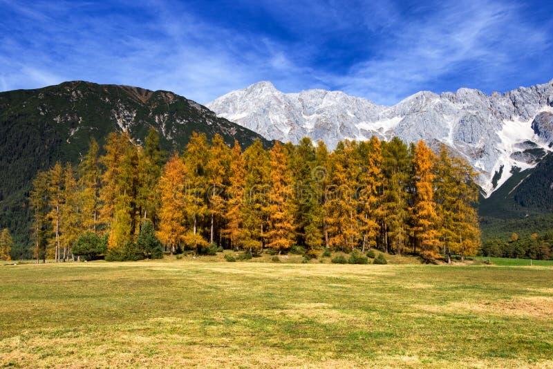 Οροπέδιο Mieminger, βουνά το φθινόπωρο, Αυστρία στοκ εικόνες με δικαίωμα ελεύθερης χρήσης