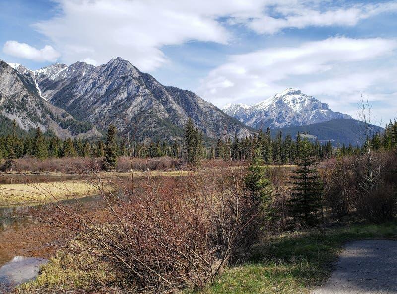 Οροσειρά κοντά στο Banff ,Albnerta στοκ φωτογραφίες με δικαίωμα ελεύθερης χρήσης